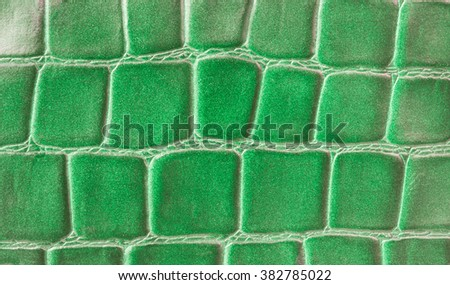 Leather Texture green Pressed crocodile pattern - stock photo