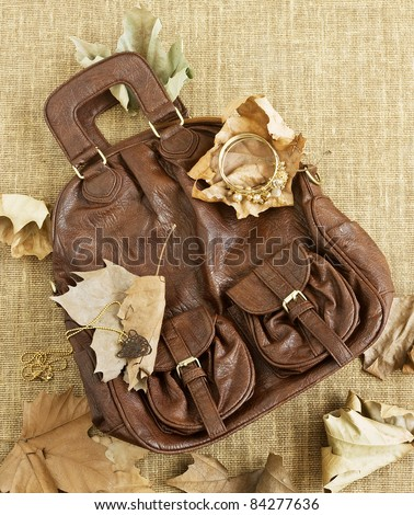 leather women bag with jewel and autumn leaves in pan - stock photo