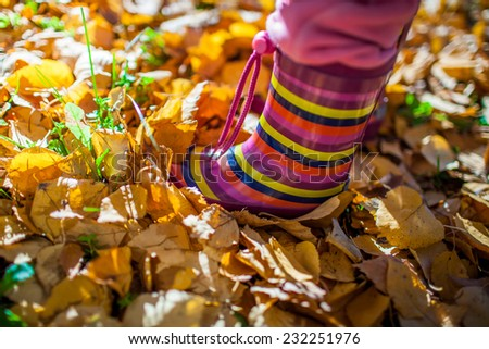 Leaves and colorful boots. Close up of kid feet walking in colorful boots. - stock photo