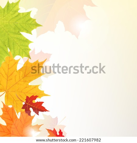 Leaves Border - stock photo
