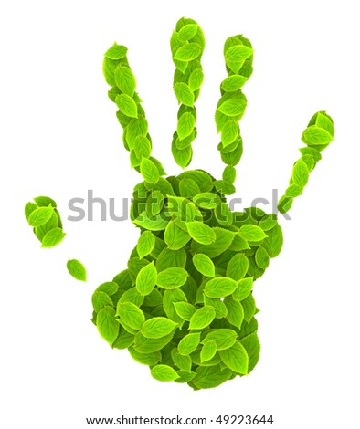leaves hand print green nature