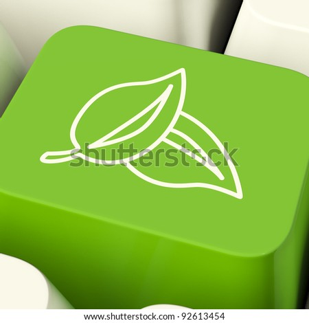 Leaves Icon Computer Key Green Showing Recycling And Eco Friendly - stock photo