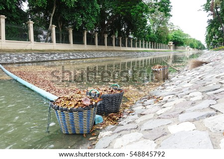 leaves in water, waste water pollution garbage floating on the surface of the water. Water pollution with dirt and leaves tree garbage floating on the surface of the river
