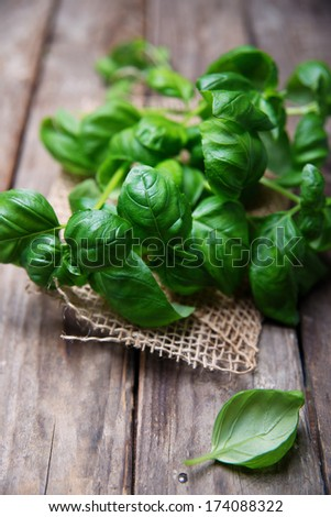 Leaves of basil on a old wooden table - stock photo