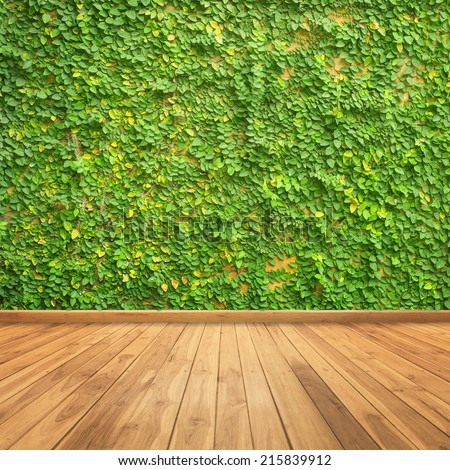 Leaves on wall and wood wall  for background - stock photo