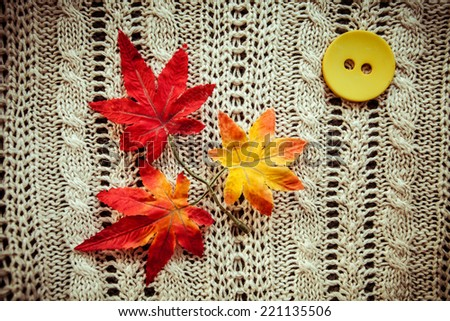 leaves red autumn on a grey knitted background and button yellow - stock photo