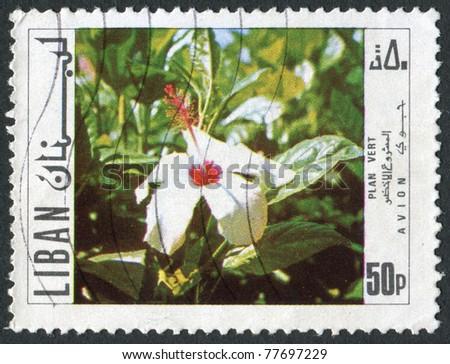 LEBANON - CIRCA 1971: Postage stamps printed in Lebanon, shows a flowering, circa 1971 - stock photo