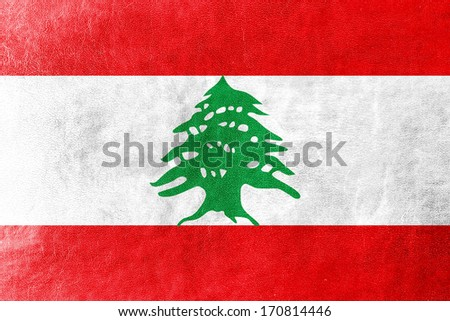 Lebanon Flag painted on leather texture