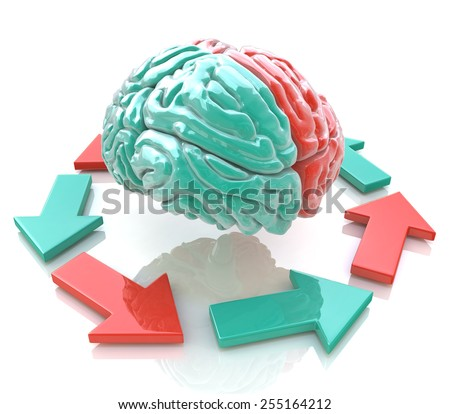 Left Brain, Right Brain. Concept. Human brain hemispheres  - stock photo