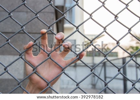 Left human hand in the cage