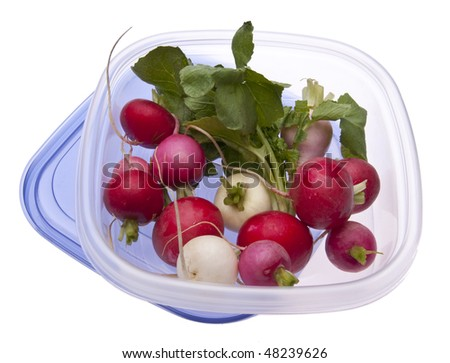 Leftover Easter Radishes in a Plastic Container Isolated on White.