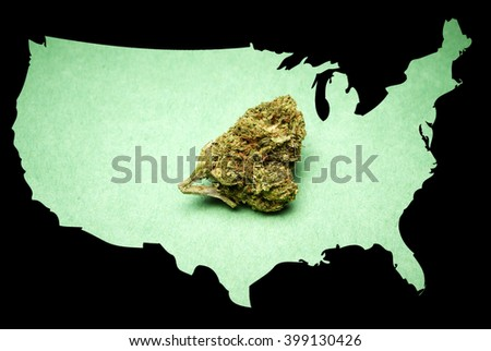 Legal American Marijuana Cannabis In The United States Of America