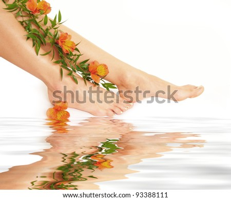 Legs isolated on water - stock photo