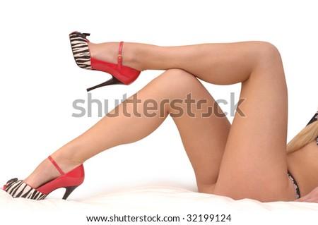 Legs Long Legs - stock photo