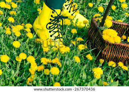 Legs with yellow shoes in dandelion flowers - meadow in spring - stock photo