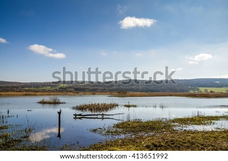 Leighton Moss RSPB, Lancashire, England - stock photo