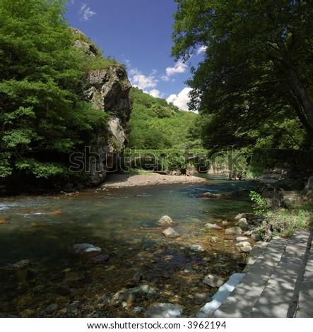Leiza river with trees and vegetation. Leizaran Valley, Navarra and Gipuzkoa, Spain - stock photo