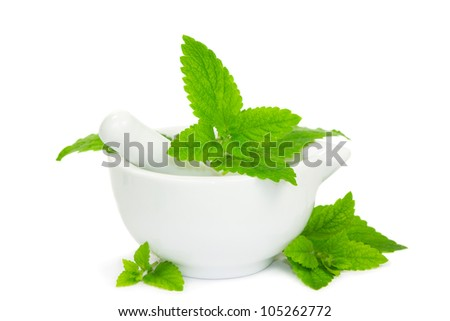 Lemon balm leaves with pestle and mortar used to crush the leaves for herbal and medicinal use and as a flavouring in cooking