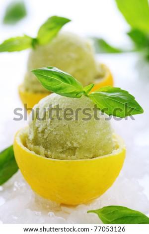 lemon- basil sorbet in cups of lemon - stock photo
