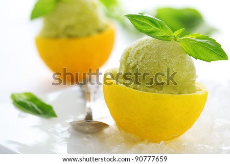 lemon- basil sorbet in cups of lemon - stock photo