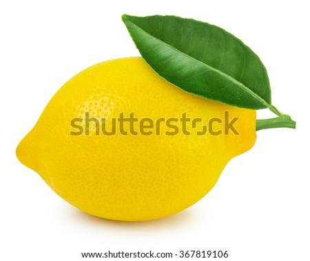 Lemon fruit with leaf isolated - stock photo