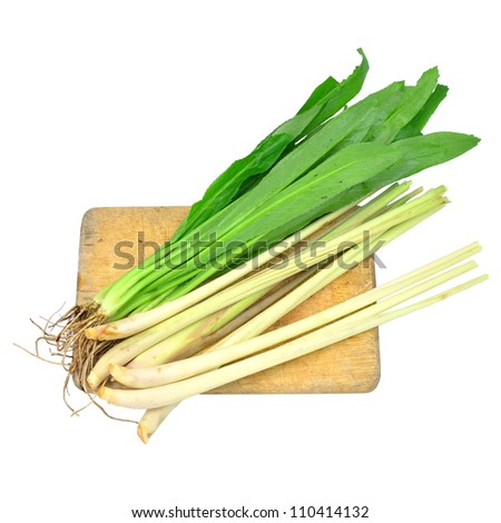 Lemon grass and Coriander on cutting board isolated on white - stock photo