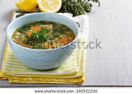 Lemon pasta chicken soup with orzo and parsley - stock photo
