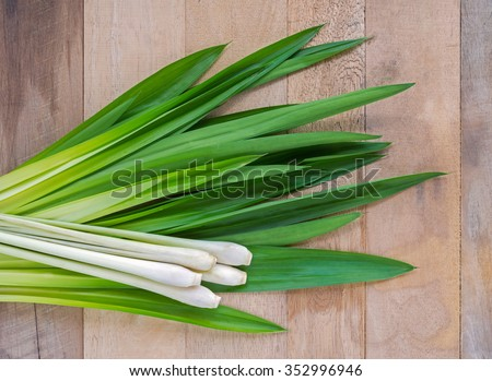Lemongrass and fresh pandan leaves on wooden tabel - stock photo