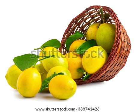 Lemons in basket isolated on white - stock photo