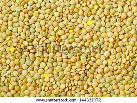 lentil background - stock photo