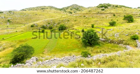 Lentil fields on the island of Lefkada, Greece - stock photo