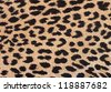 Leopard fabric background with a black spots - stock photo