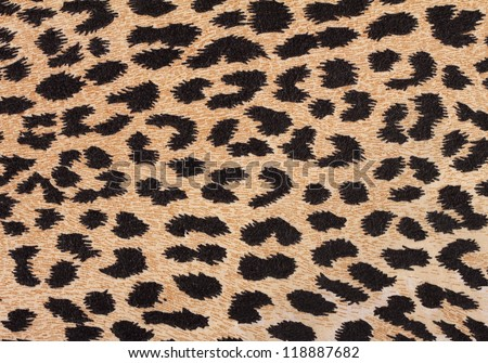 Leopard fabric background with a black spots