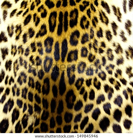 Leopard skin texture for background - stock photo