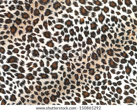 leopard tiger skin texture background