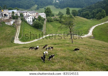 Lessinia (Verona, Veneto, italy), landscape: village and cows at pasture