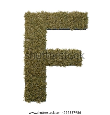 Letter F made of dead grass, growing on wood with metal frame - stock photo