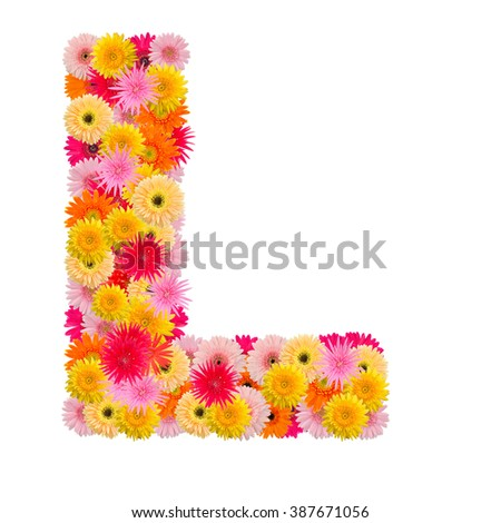 Letter L alphabet with gerbera  isolated on white background   - stock photo