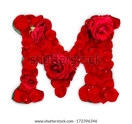 Letter M made from red roses and petals isolated on a white background  - stock photo