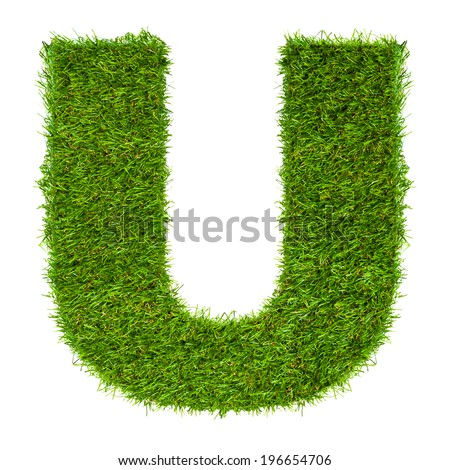Letter U made of green grass isolated on white - stock photo