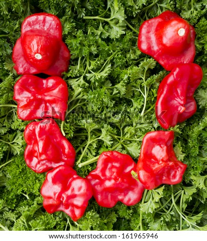 Letter U. Pepper and parsley. - stock photo
