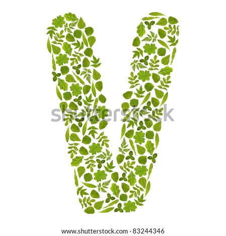 Letter V from green leafs - stock photo