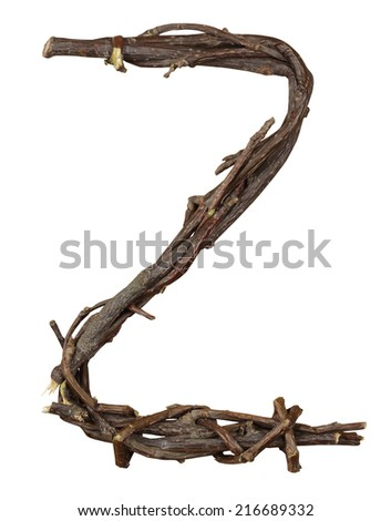 Letter Z. Alphabet from the branches of birch are isolated on a white background. Wooden font. - stock photo
