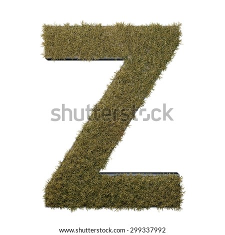 Letter Z made of dead grass, growing on wood with metal frame - stock photo