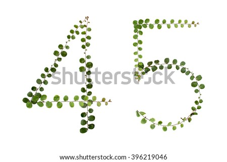 "Letters font number  ""4,5"" from climber leaf, ivy leaf, green leaf on isolated."