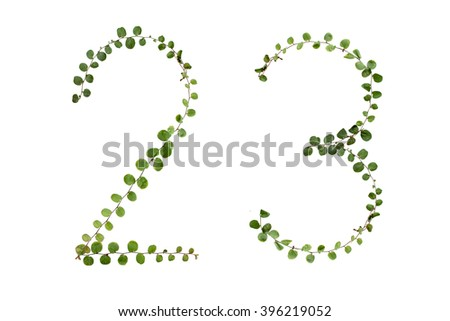 "Letters font number  ""2,3"" from climber leaf, ivy leaf, green leaf on isolated."