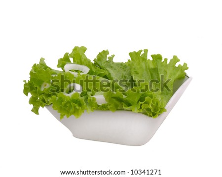Lettuce and onion - stock photo