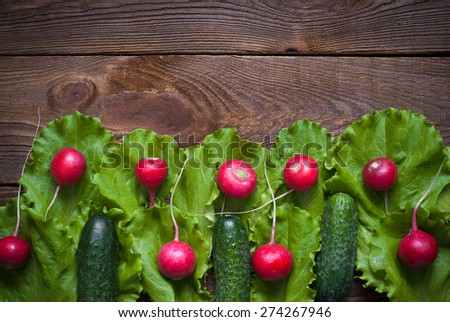 Lettuce cucumbers and radishes - ingredients for a salad. - stock photo