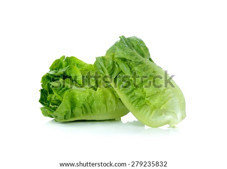 lettuce isolated on white background.