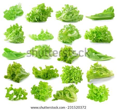 lettuce on white background - stock photo
